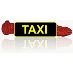 Lovehome Taxi - Dildo & Co statt Pizza